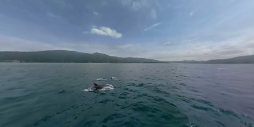 福斯克湾VR视频